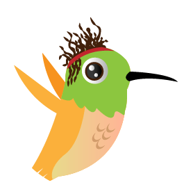 Charly - Designer & Illustrateur