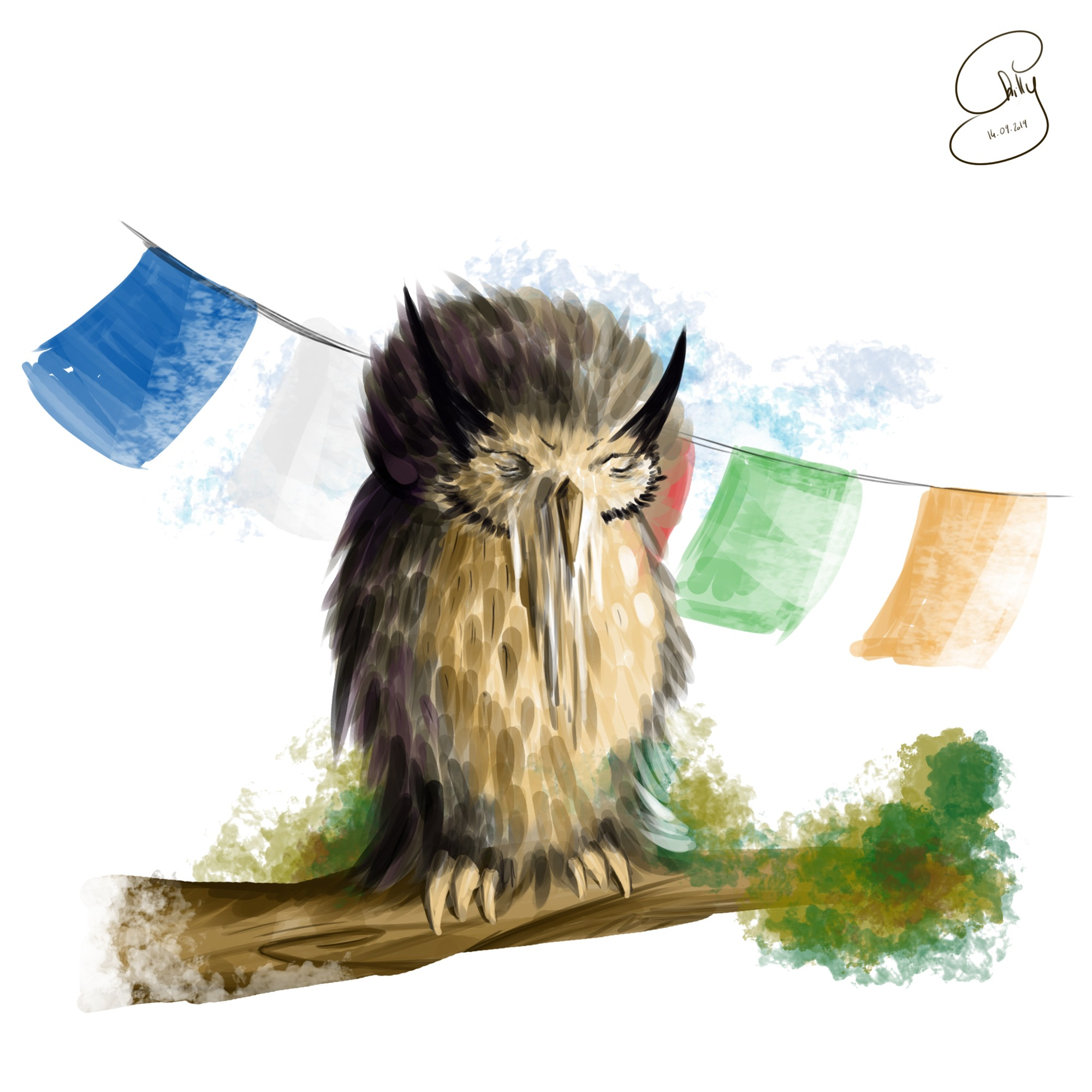 The Old Wise Owl